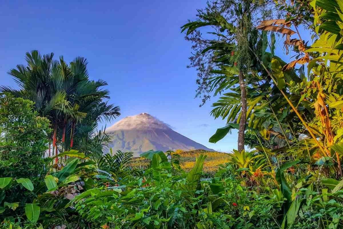 Costa Rica Wm 2021